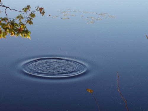 Ripple-Effect-by-Kristen-DiPaolo-qpps_723698907471606.LG