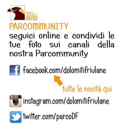 parco_dolomiti_friulane