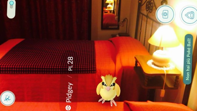 pokemon go B&B